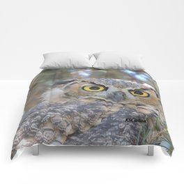 Young Owl at Noon Comforters