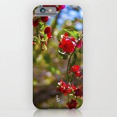 Bougainvillea II Slim Case iPhone 6s