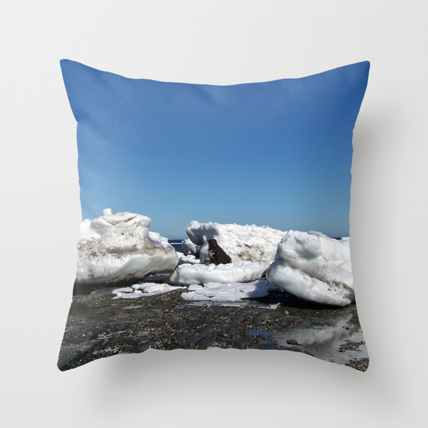 Picture of: Icebergs And The Big Dog Throw Pillow By Danbythesea Society6
