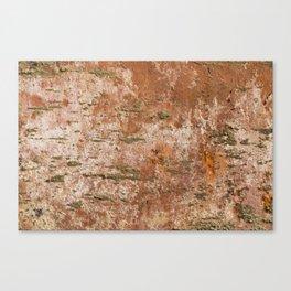 old brick texture Canvas Print