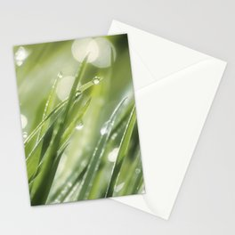 Million lights in the grass Stationery Cards