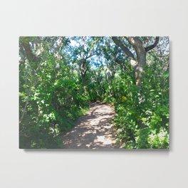 Shady Path Metal Print