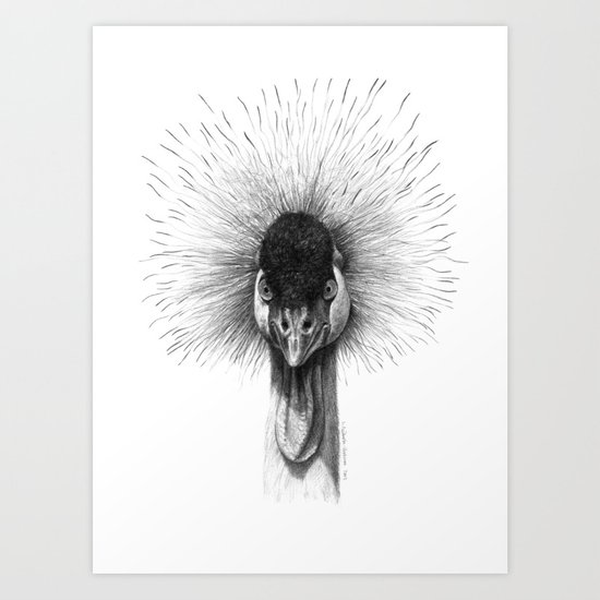 Black Crowned Crane G2012-065 Art Print