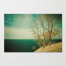 Dare to Leap Canvas Print