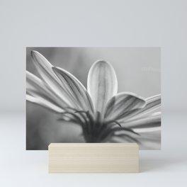 Purple Hints of Black and White Mini Art Print