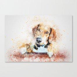 Dog Unhappy Animal Canvas Print