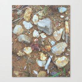 Western Rocks Canvas Print