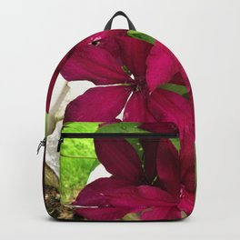 Rouge Cardinal Clematis Backpack