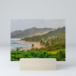 Panoramic View of Coast with Blue Roofed Home Mini Art Print