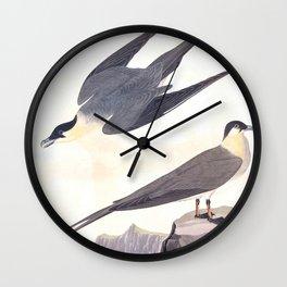 Arctic Yager Bird Wall Clock