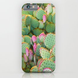 Prickly Pear Cactus Arizona iPhone Case