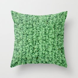Nature print, Green rapeseed agriculture field Top View. Rapeseed. Throw Pillow