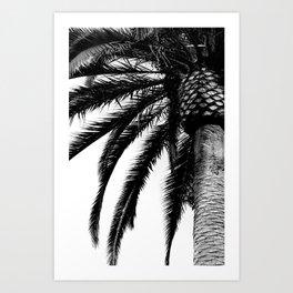 Tropical Darkroom #137 Art Print