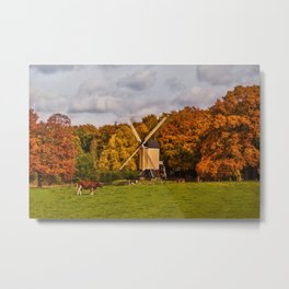 Autumn in Holland Metal Print