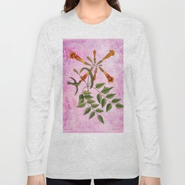 Hummingbird with Trumpet Vine, Vintage Natural History Collage Long Sleeve T-shirt