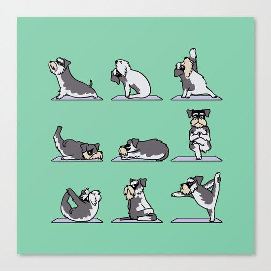 Miniature Schnauzer yoga Canvas Print