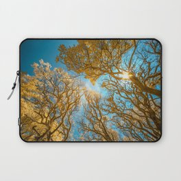 Morning Glory  Photography Laptop Sleeve