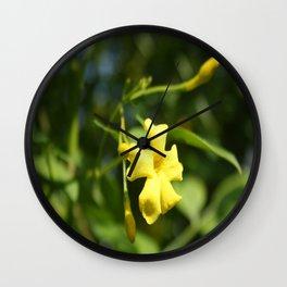 Carolina Jasmine Single Bloom In Sunlight Wall Clock