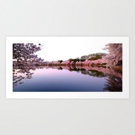 Pink Cherry Blossom Sunrise, Washington DC Art Print