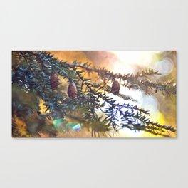 Through The Pines II Canvas Print