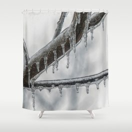 Icy Branch Shower Curtain