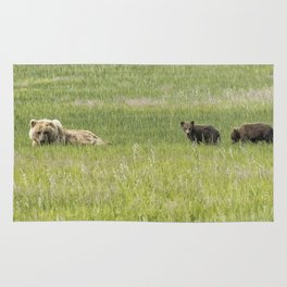 Mother Brown Bear With Her Two Cubs, No. 2 Rug