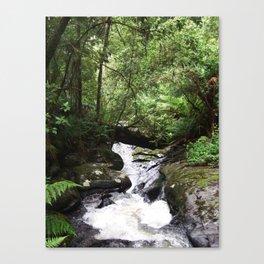Streaming Canvas Print