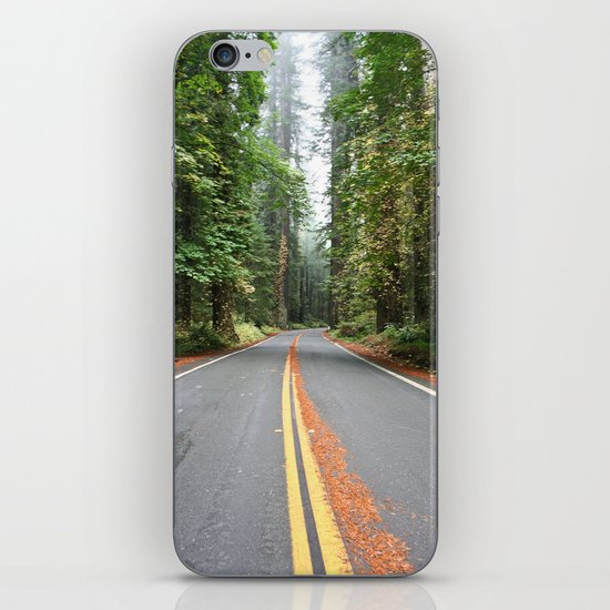 Avenue Of The Giants iPhone & iPod Skin