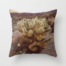 Cholla Cactus Garden VI Throw Pillow