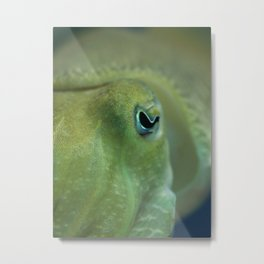 Cuttlefish Love... Metal Print