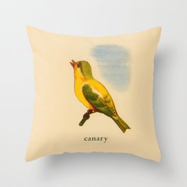 Cute Canary Painting Throw Pillow