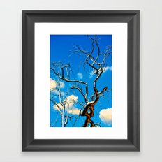 Tree Of Floyd Framed Art Print