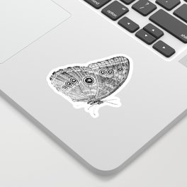 Owl Butterfly Sticker