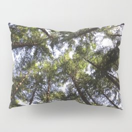 From Above Pillow Sham