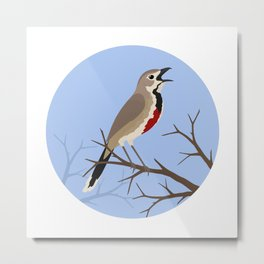 Rosy-patched Bush-shrike Metal Print