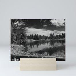 Balm For The Soul Mini Art Print