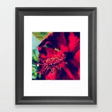 Saimaa Framed Art Print
