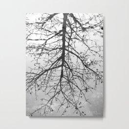 { Reflection } Metal Print