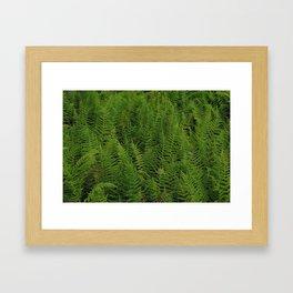 Green Space Framed Art Print