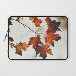 Fall colors in Canada Laptop Sleeve