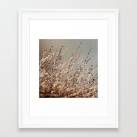 champagne Framed Art Prints featuring Champagne by Kitsmumma