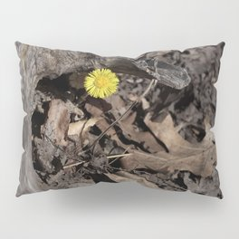 Hello Spring! Pillow Sham