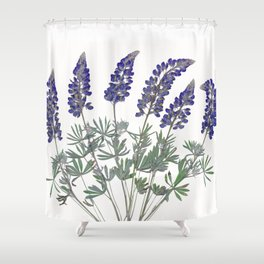 Pressed Lupine Flowers Bouque Shower Curtain