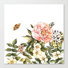 Vintage floral watercolor background Canvas Print