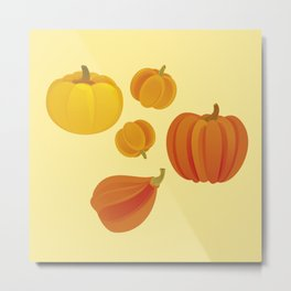 Pumpkins. Thanksgiving day. Metal Print