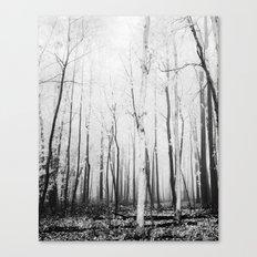 Wynn Hill Canvas Print