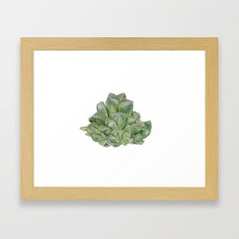 Haworthia Retusa succulent power Framed Art Print
