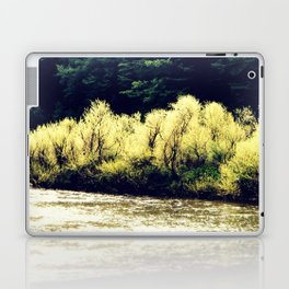 Sun-Kissed Muddy Water Laptop & iPad Skin
