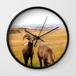Long horned sheep Wall Clock