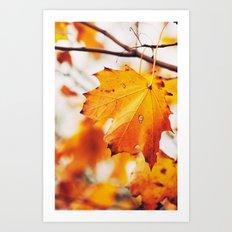Autumn 24431 Art Print